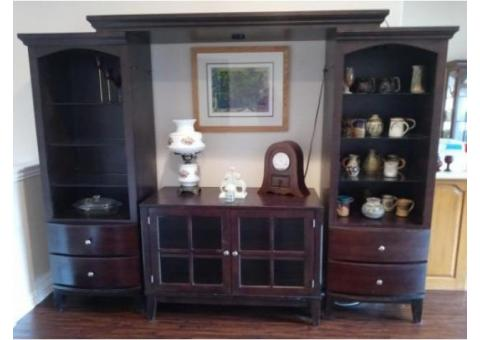 entertainment center - dark wood and contemporary